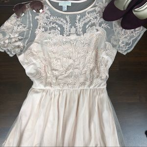 Blush Lace Sheer Fit and Flare Dress
